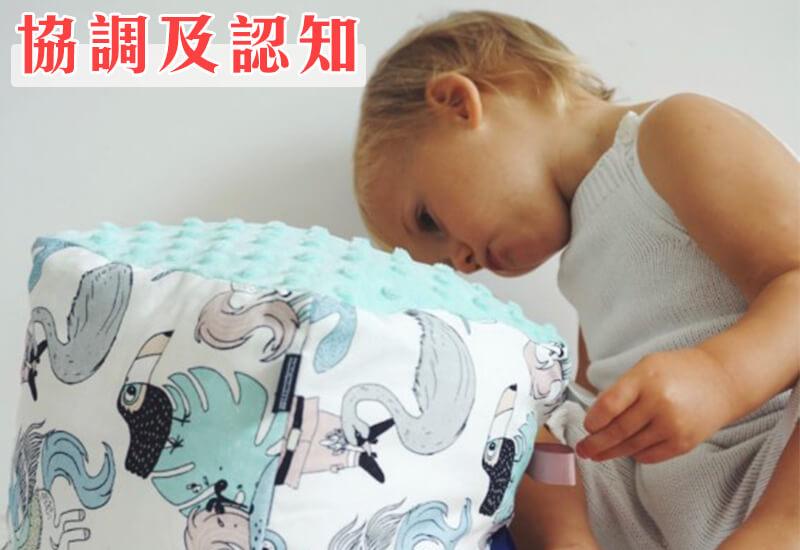 18個月前嬰幼兒發展成長重點-協調及認知