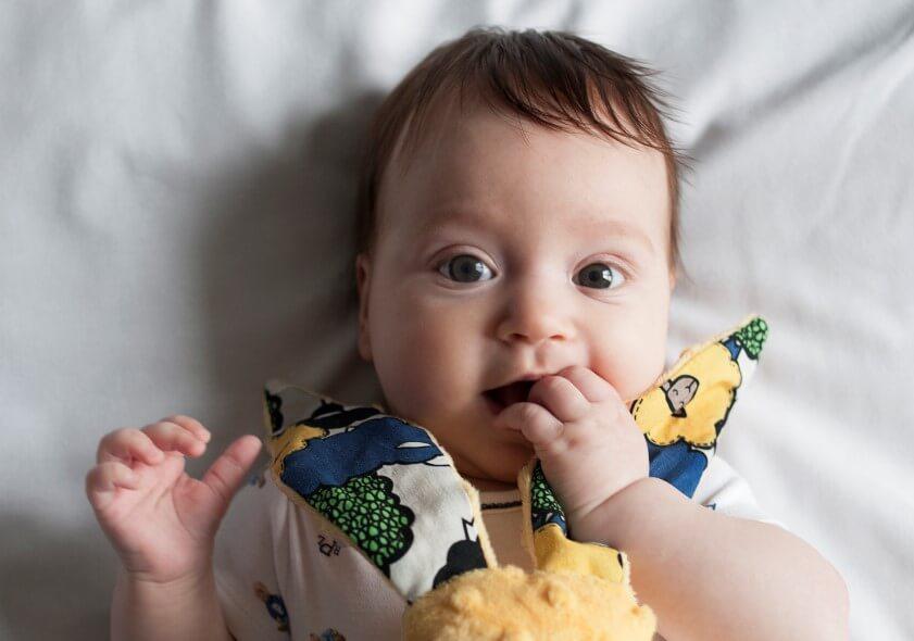 嬰兒玩具推薦La Millou豆豆安撫兔