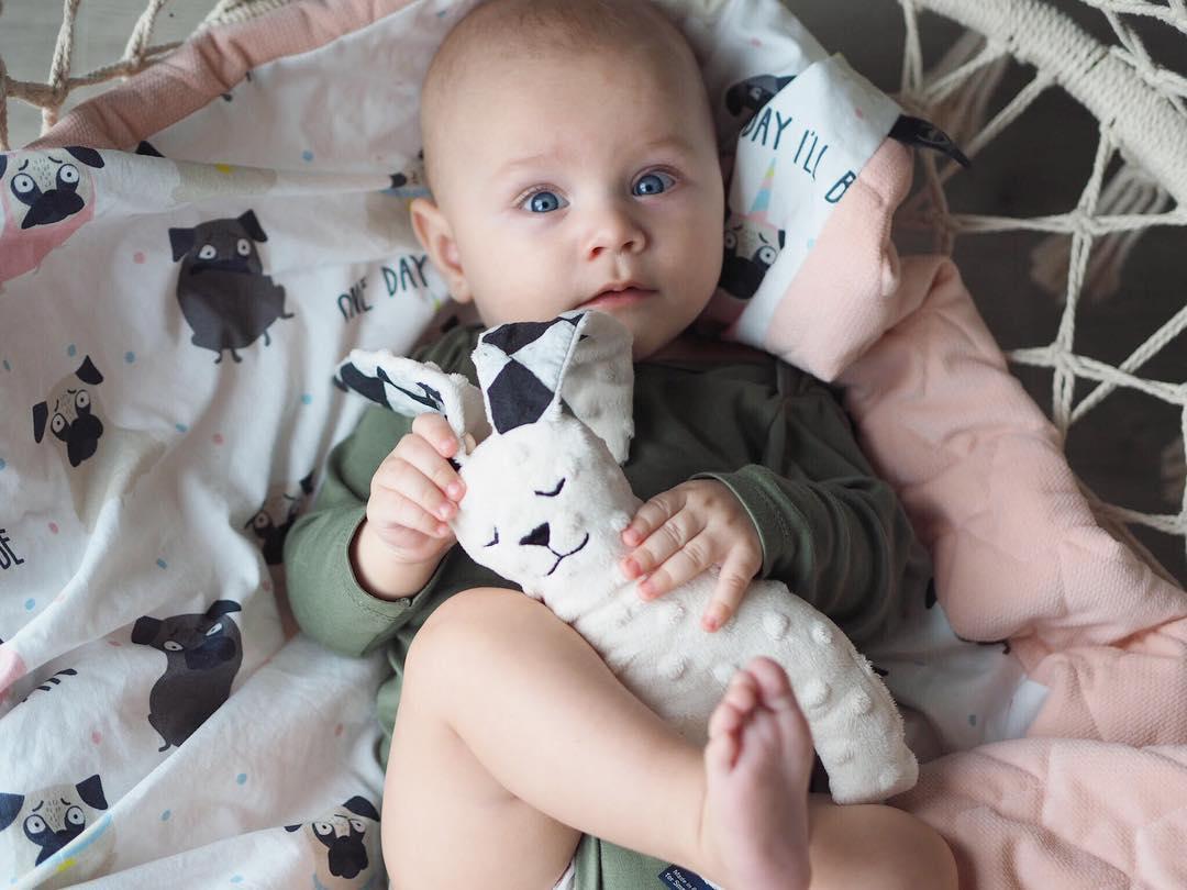 嬰兒成長玩具La Millou
